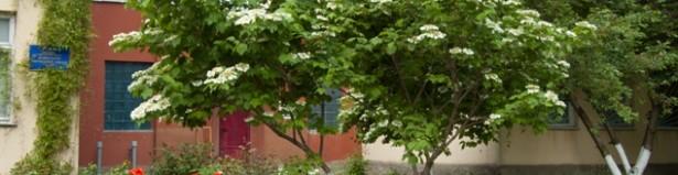 Одесса детский садик № 15 - 1